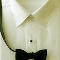 Ivory Laydown Collar Plain Front Shirt