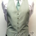 Celedon Green Vest Enchantment