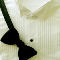 Ivory Wing Tip Collar