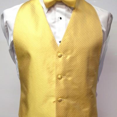 Saffron Vest and Bow Tie